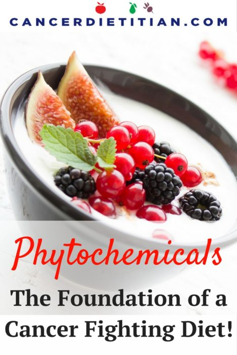 phytochemicals-graphic