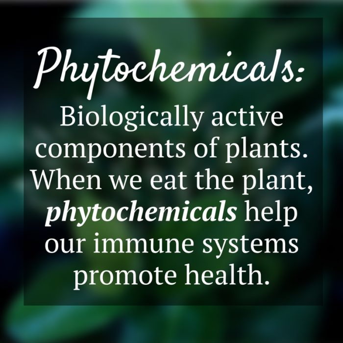 phytochemicals-definition