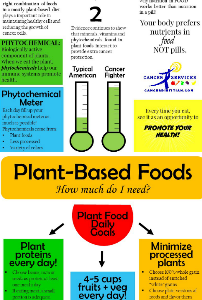 Plant Based Foods Diet